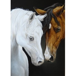 "Canvas Print,""Best Friends"" 20"" x 28"""